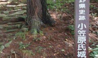 林城/アクセス・場所・地図 武田信玄に攻め落とされた信濃守護大名小笠原長時の居城 林城【お城特集 日本の歴史】