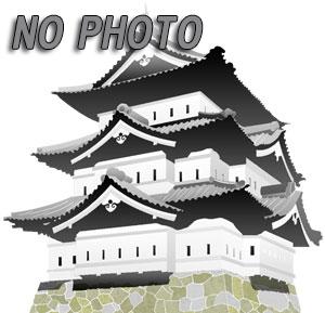 加賀野井藩