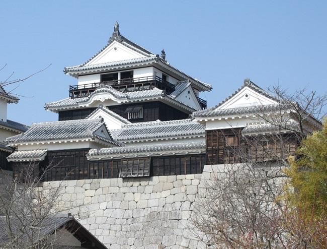 松山城(伊予) 連立式天守閣(1/450)日本の名城プラモデル 屋根ゴールドメッキ豪華版