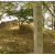 小田城:戦国時代佐竹義重・上杉謙信と激しく争った小田氏治の居城 小田城【お城特集 日本の歴史】